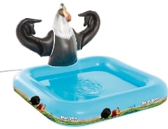 Pool Angry Birds Mighty