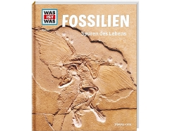 Fossilien Nr.69